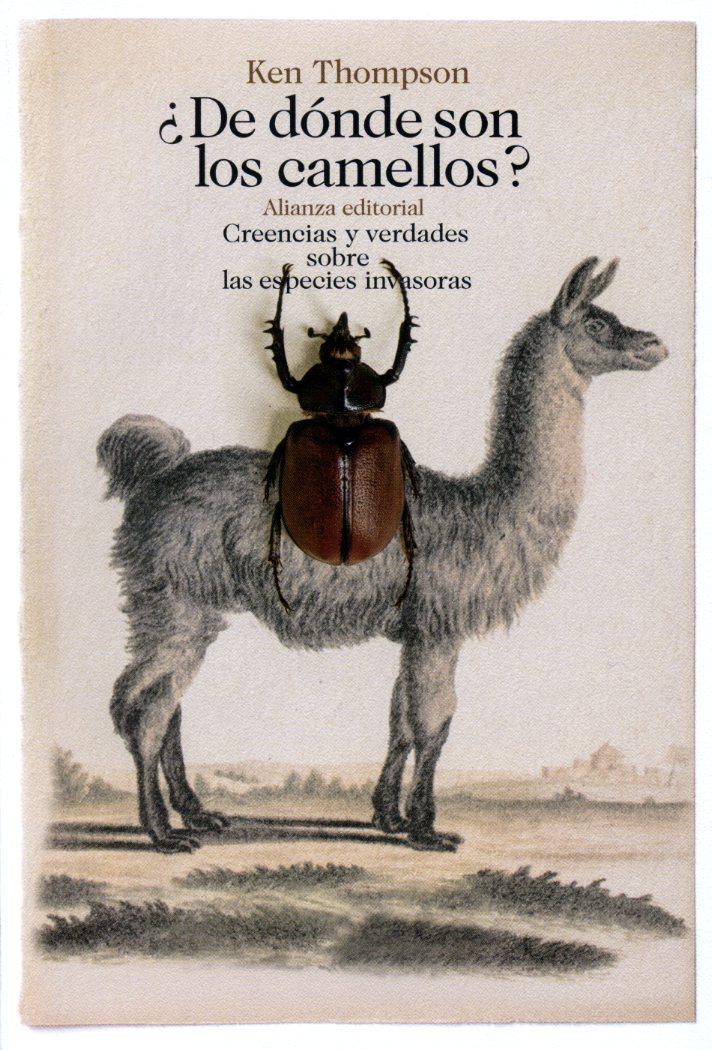 078_camels